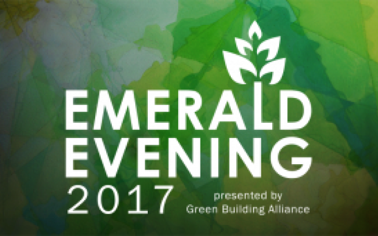 2017 Emerald Evening Gala image